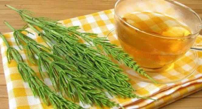 Dieta Para Perder Barriga! Alimentos Queimadores de Gordura