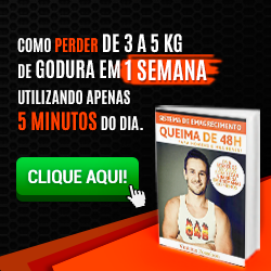 Download do Livro Queima de 48 horas Vinicius Possebon