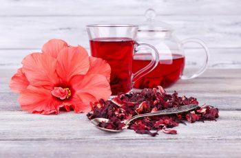 Chá de Hibisco Emagrece Mesmo? Testamos, Confira!